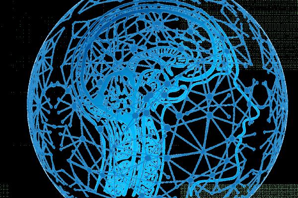 CAN Brain Logo