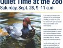 2019 Quiet Time At The Zoo Flyer
