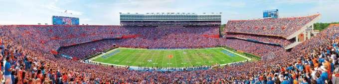 The Swamp Football Stadium